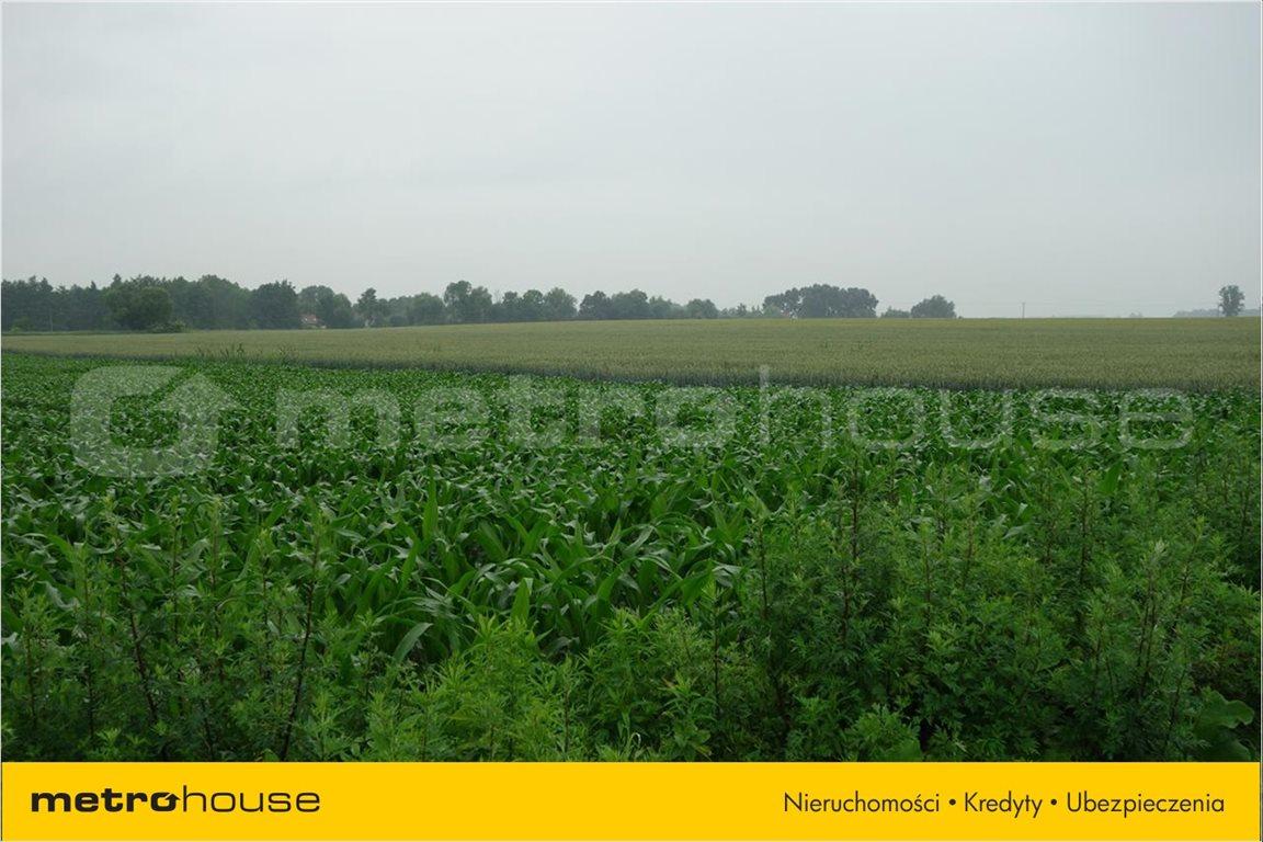Działka rolna na sprzedaż Bogdaszowice, Kąty Wrocławskie  3000m2 Foto 3