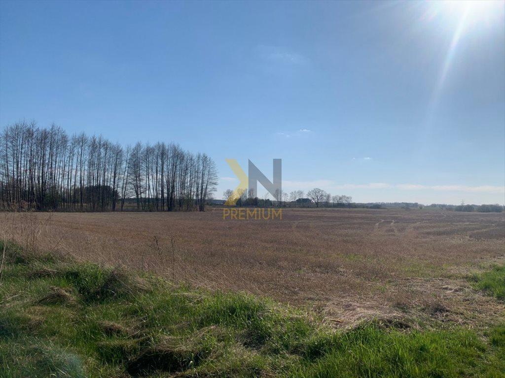 Działka rolna na sprzedaż Chrząstawa Wielka, Młyńska  22700m2 Foto 3