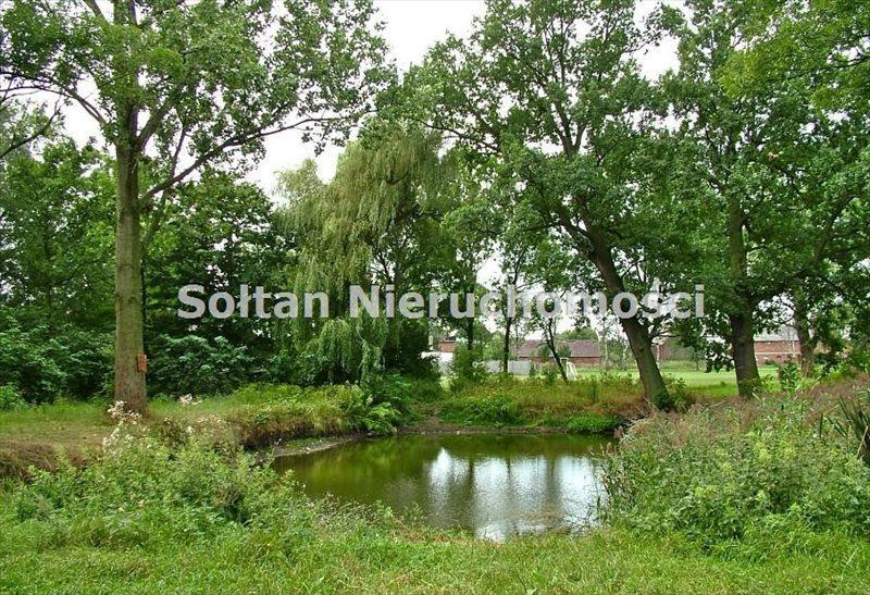 Lokal użytkowy na sprzedaż Srocko Wielkie  450m2 Foto 10