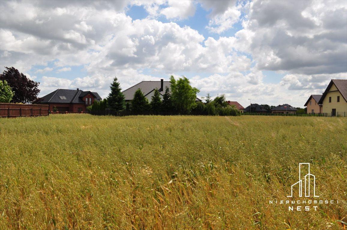 Działka budowlana na sprzedaż Kórnik, 3 km od centrum Kórnika  775m2 Foto 2