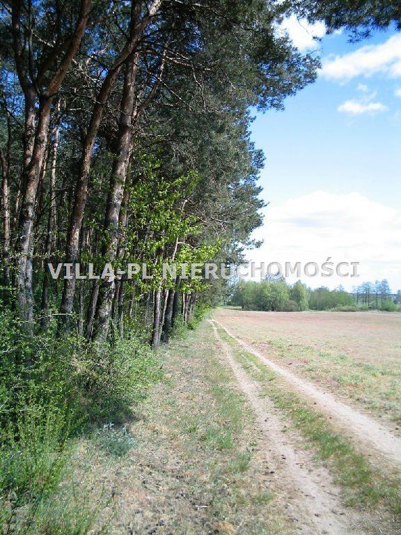 Działka leśna na sprzedaż Łęczyca  44780m2 Foto 3