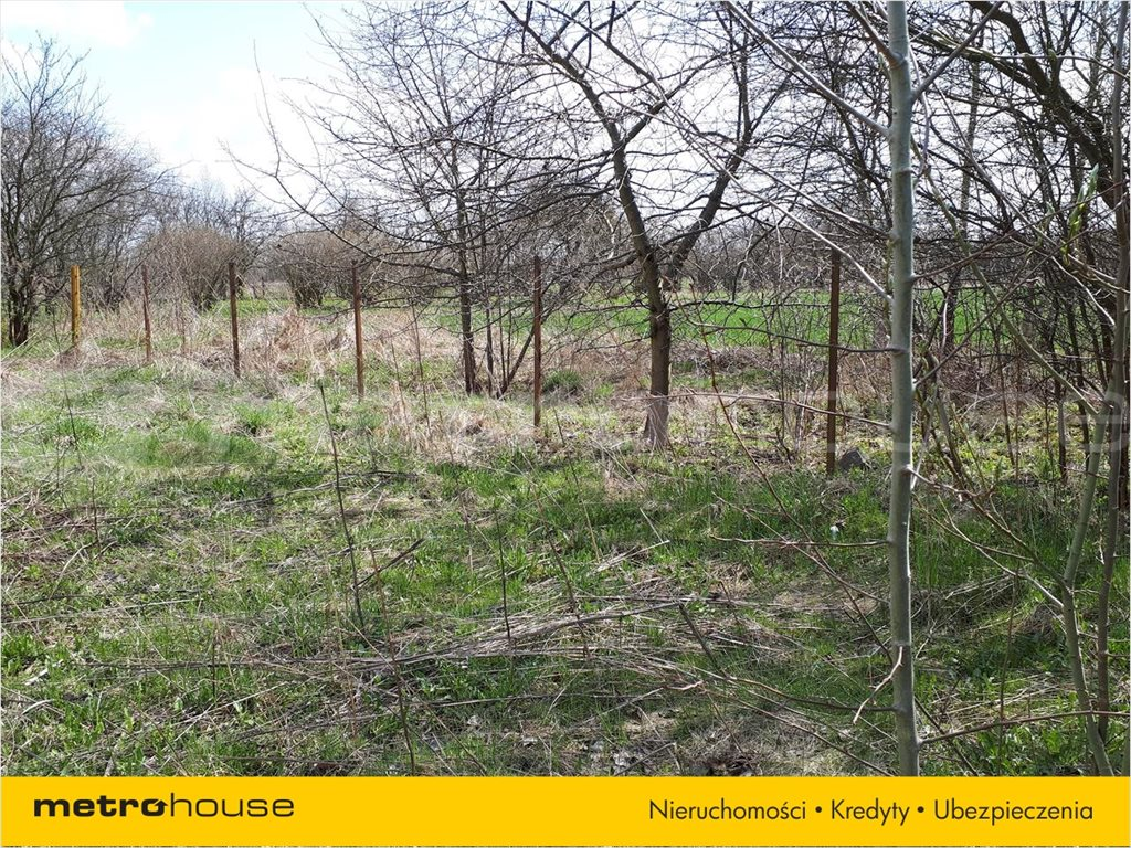 Działka budowlana na sprzedaż Terespol, Terespol  4249m2 Foto 7