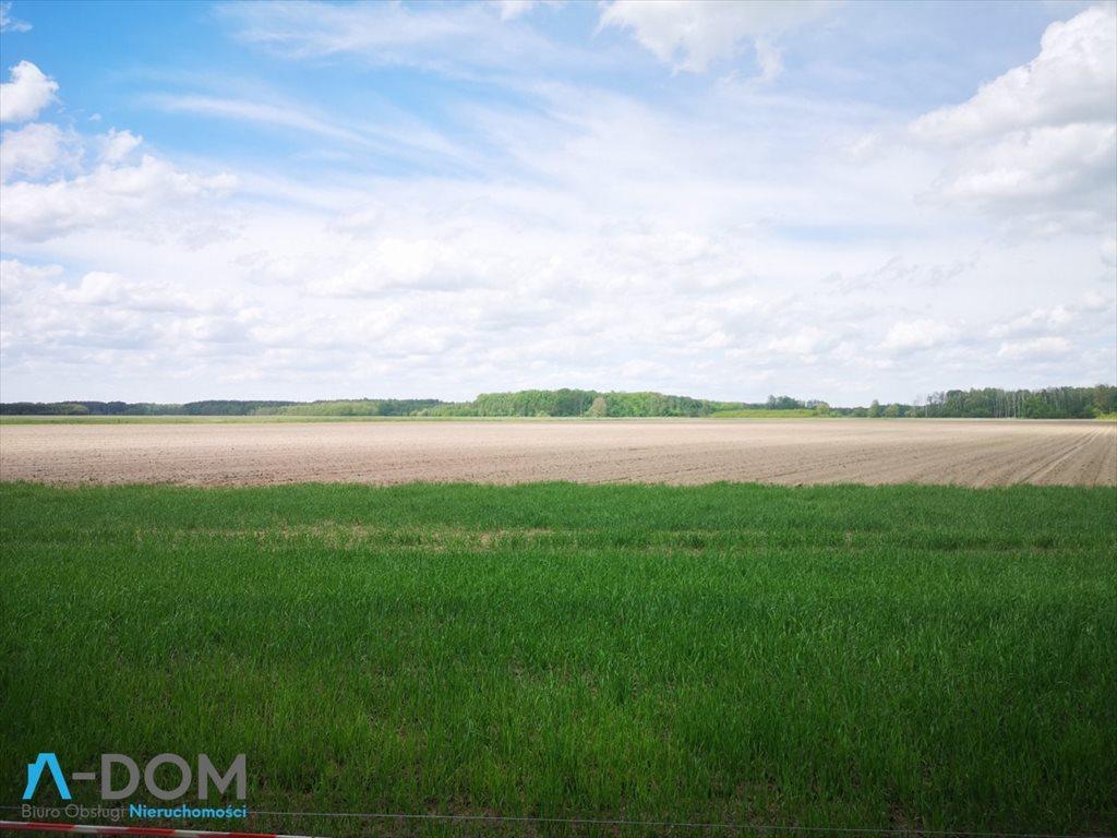Działka rolna na sprzedaż Podlesie  100000m2 Foto 2