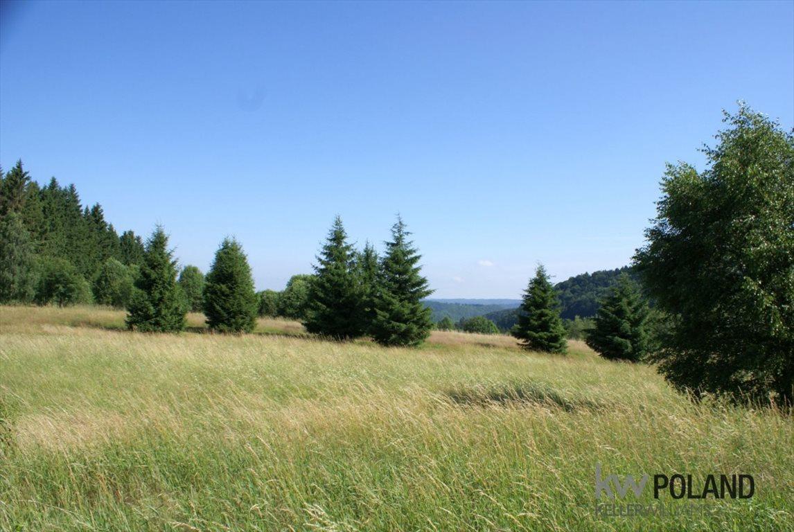 Działka rolna na sprzedaż Kudowa-Zdrój, Pstrążna  14309m2 Foto 9
