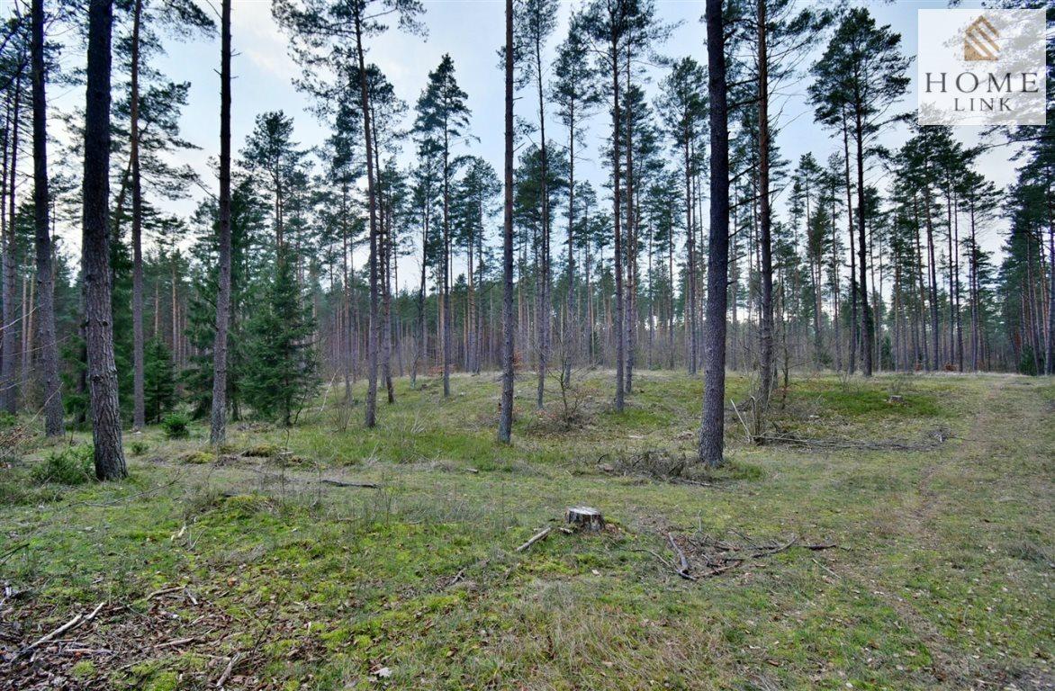 Działka leśna na sprzedaż Warkały  47800m2 Foto 2