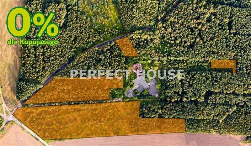Działka inwestycyjna na sprzedaż Kopanka  33031m2 Foto 2