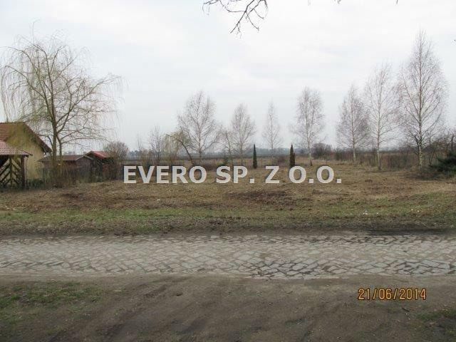Działka budowlana na sprzedaż Mnichowice, Mnichowice, duża działka, zabudowa zagrodowa  3022m2 Foto 5