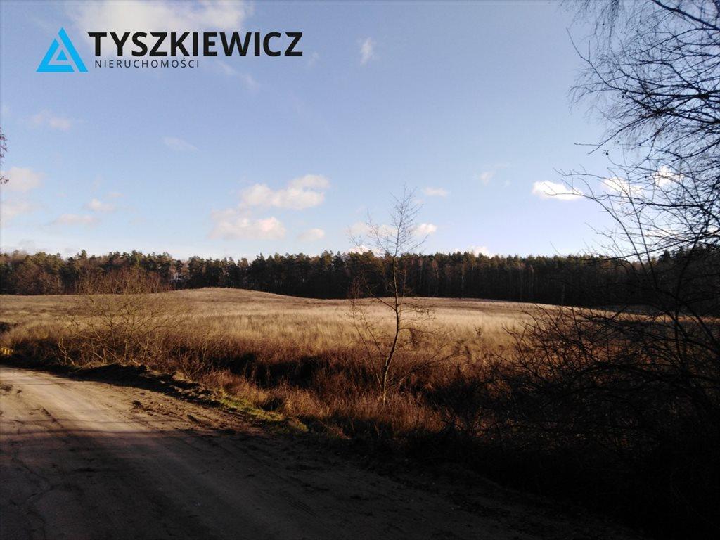 Działka budowlana na sprzedaż Boroszewo  1000m2 Foto 1