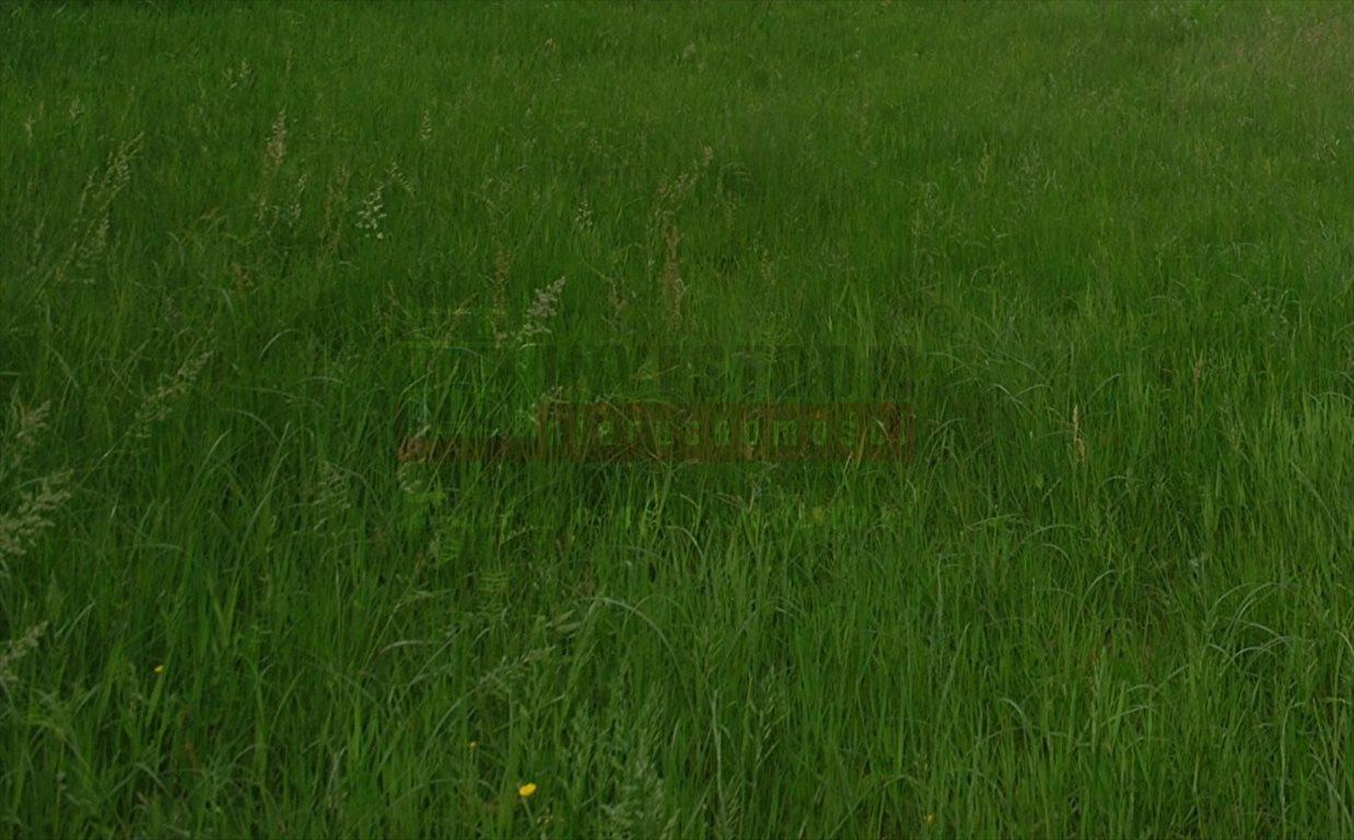 Działka inna na sprzedaż Brzezina  3811m2 Foto 1