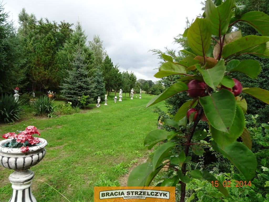 Działka siedliskowa na sprzedaż Nowe Gniewniewice  5700m2 Foto 9