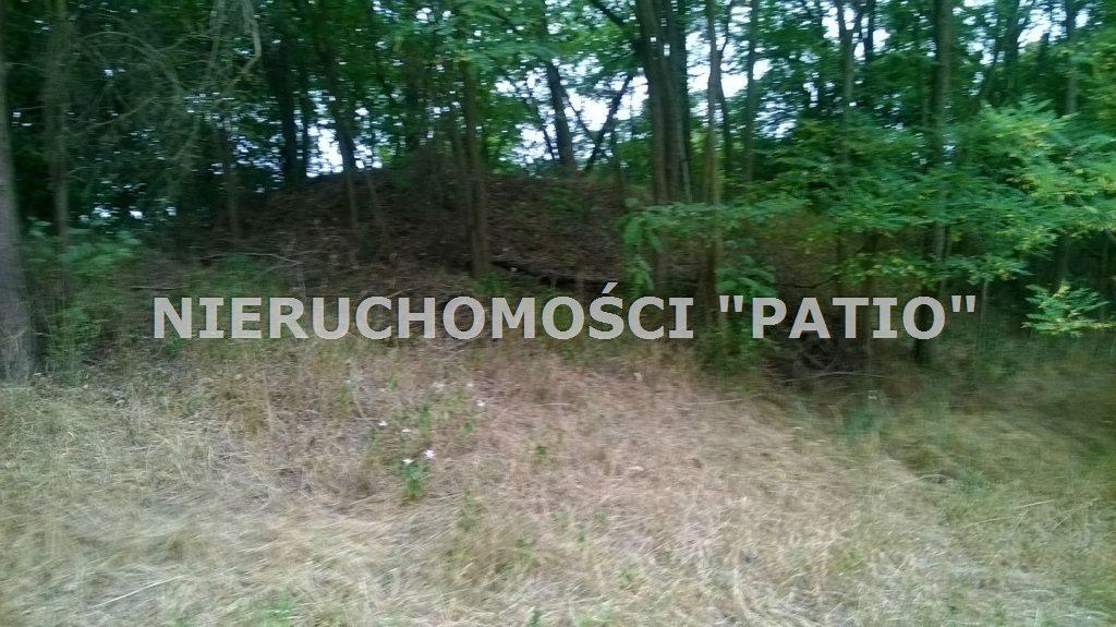 Działka budowlana na sprzedaż Grzebienisko  1283m2 Foto 6
