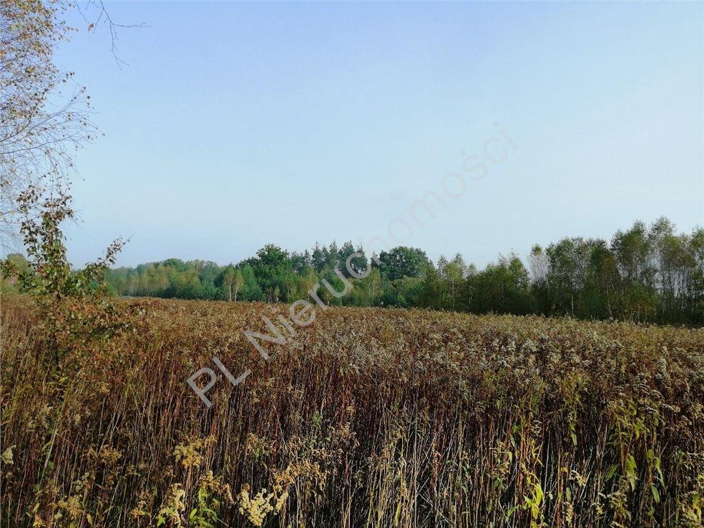 Działka rolna na sprzedaż Rakówiec  3894m2 Foto 10