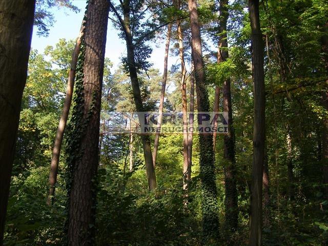 Działka leśna na sprzedaż Zalesie Dolne, Aleja Kasztanów  2511m2 Foto 1
