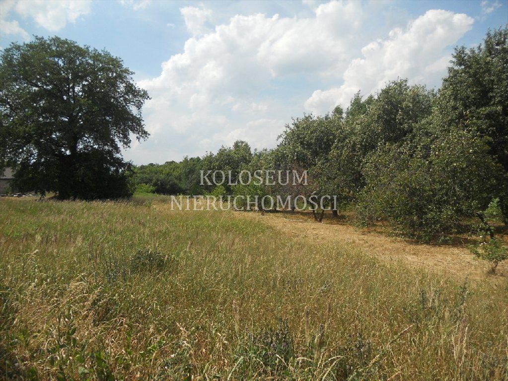 Działka siedliskowa na sprzedaż Toruń  6814m2 Foto 8