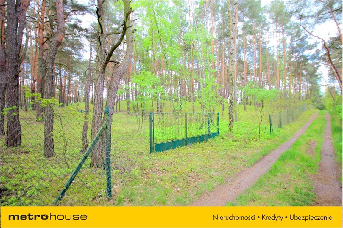 Działka rekreacyjna na sprzedaż Ldzań, Dobroń  4300m2 Foto 4