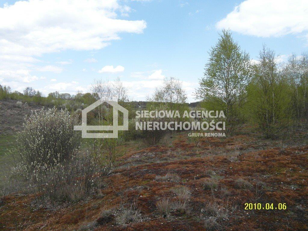 Działka leśna na sprzedaż Huta Kalna  20250m2 Foto 2