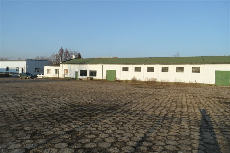Działka przemysłowo-handlowa na sprzedaż Śrem, Podwale  5691m2 Foto 3