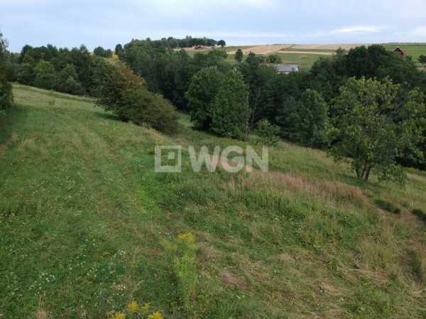 Działka rolna na sprzedaż Nowa Góra, Nowa Góra, Nowa Góra  800m2 Foto 3