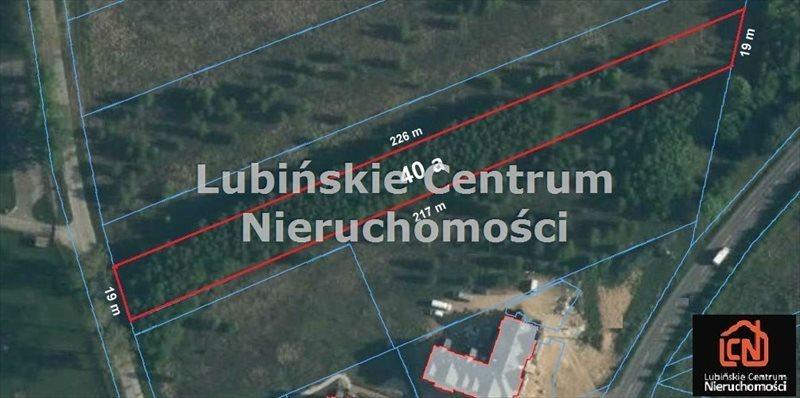 Działka inna na sprzedaż Lubin, Małomice  4000m2 Foto 1