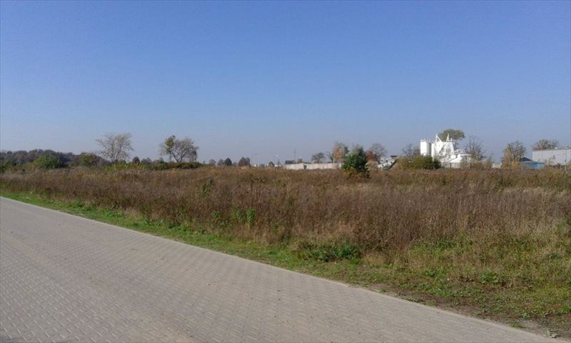 Działka przemysłowo-handlowa na sprzedaż Rabowice  24320m2 Foto 1