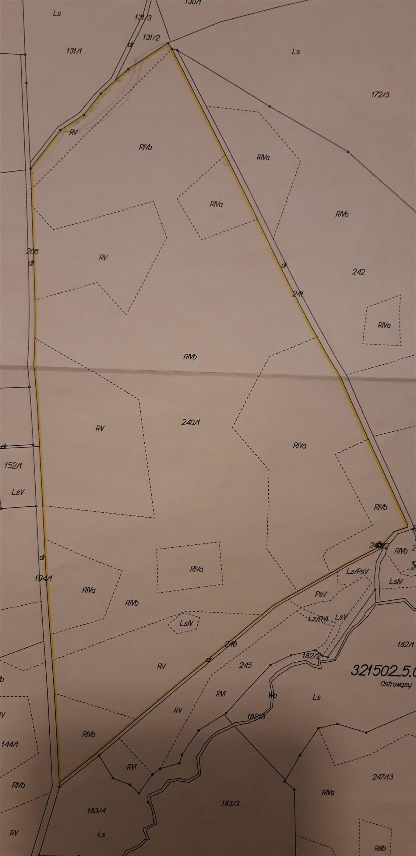 Działka rolna pod dzierżawę Ostrowąsy, pole  650000m2 Foto 1
