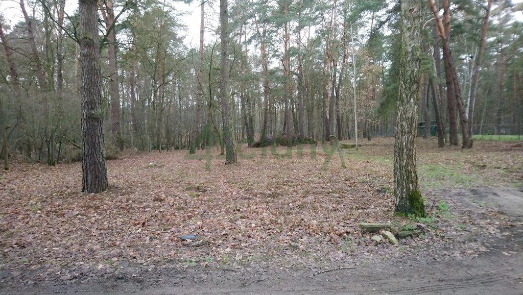 Działka leśna z prawem budowy na sprzedaż Sękocin-Las  2300m2 Foto 1