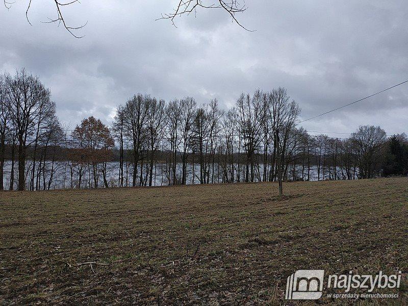 Działka rolna na sprzedaż Nętno, Wieś  2000m2 Foto 7