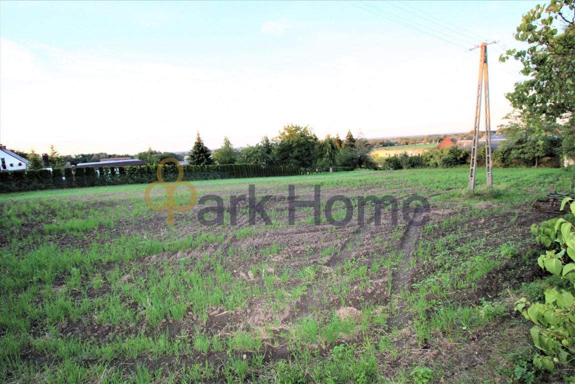 Działka rolna na sprzedaż Kurów Wielki  3356m2 Foto 3