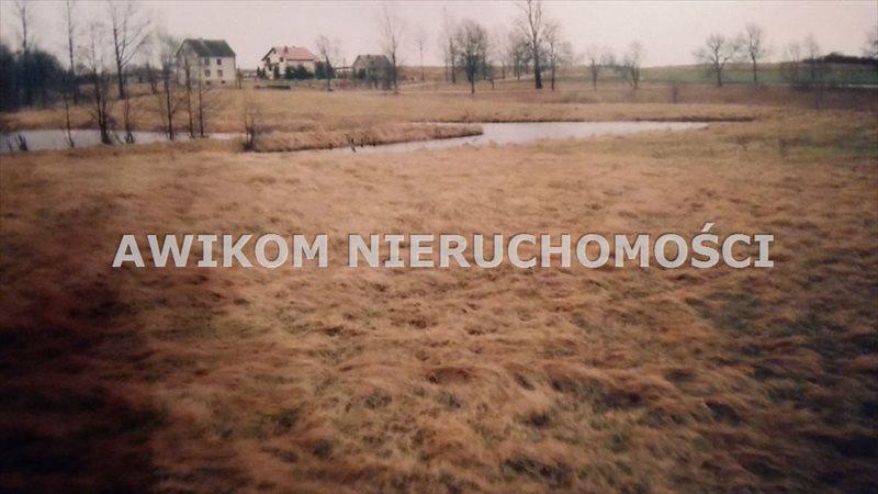 Działka rolna na sprzedaż Przerośl  54373m2 Foto 1