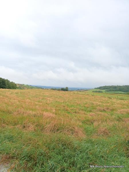 Działka rolna na sprzedaż Łajsce  8500m2 Foto 5