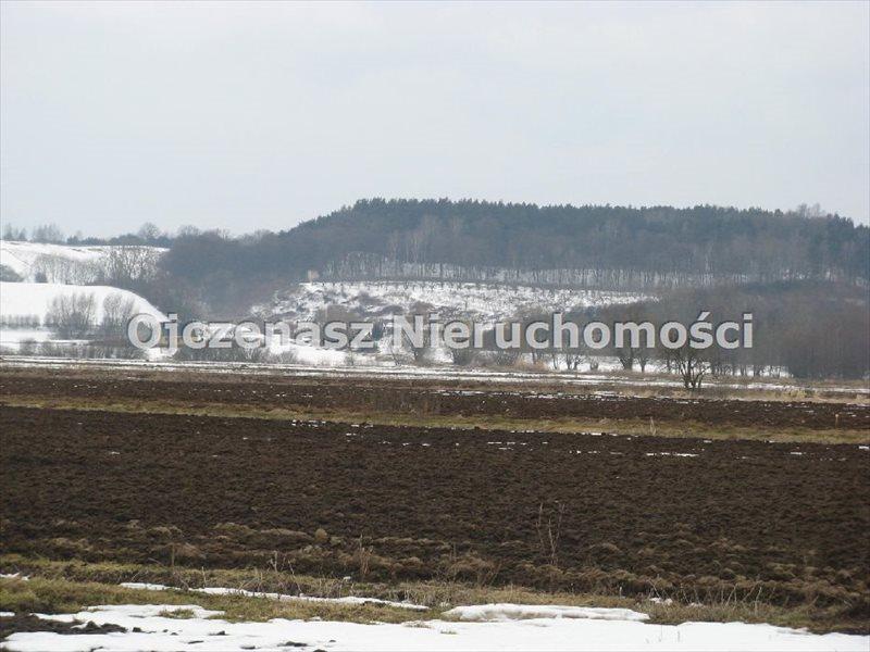 Działka siedliskowa na sprzedaż Bruki Unisławskie  10000m2 Foto 1