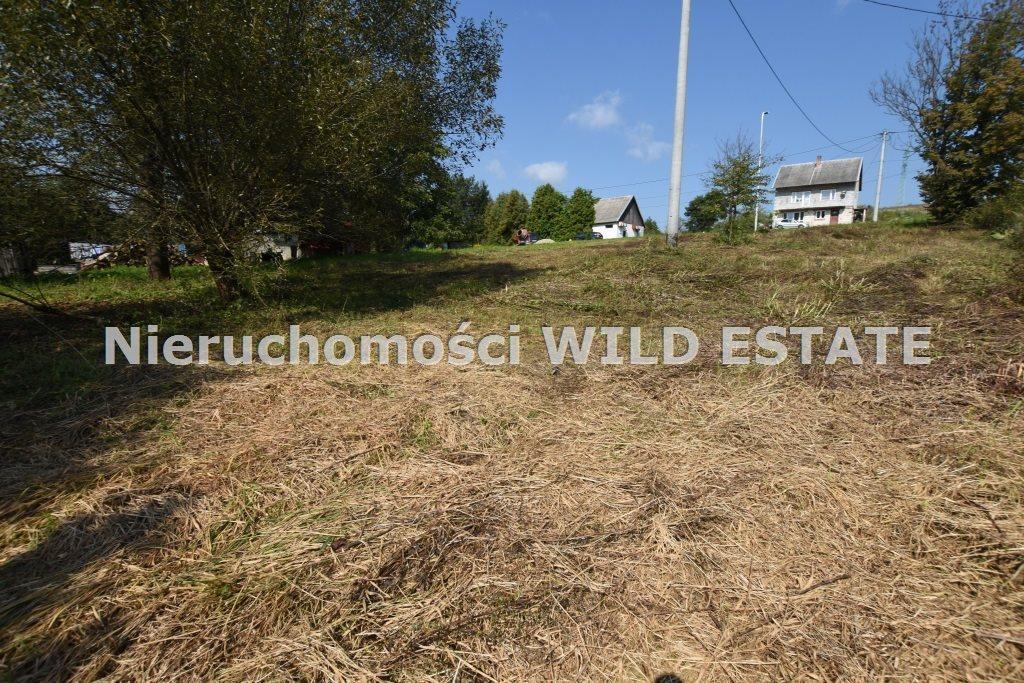 Działka inna na sprzedaż Lesko, Manasterzec  4226m2 Foto 4