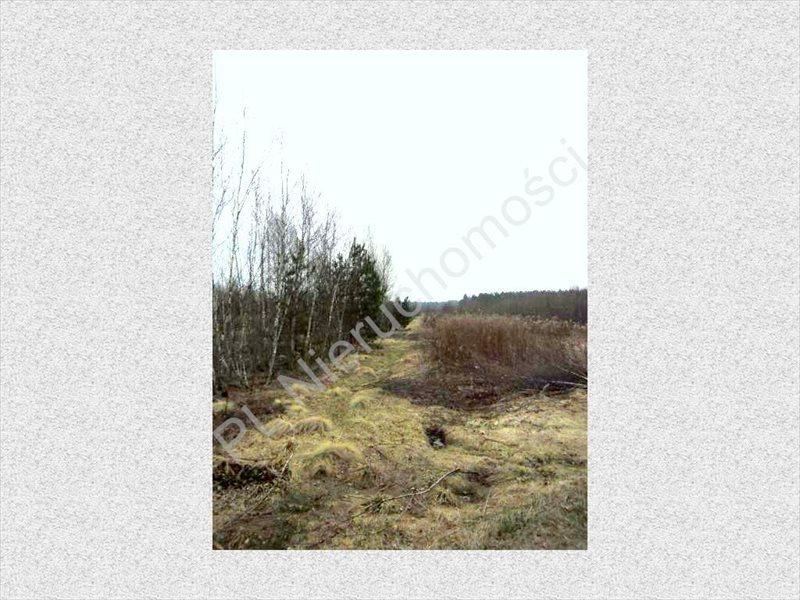 Działka rolna na sprzedaż Stanisławów  8300m2 Foto 2