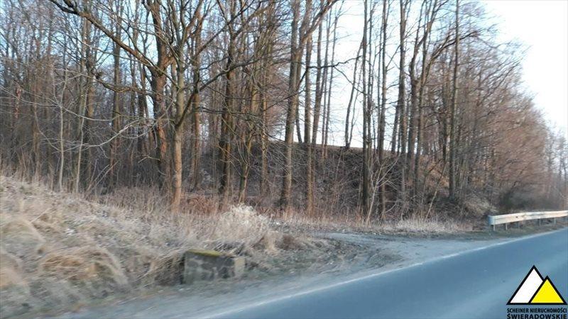 Działka leśna na sprzedaż Kościelniki Górne, Pogórze Izerskie  4800m2 Foto 1