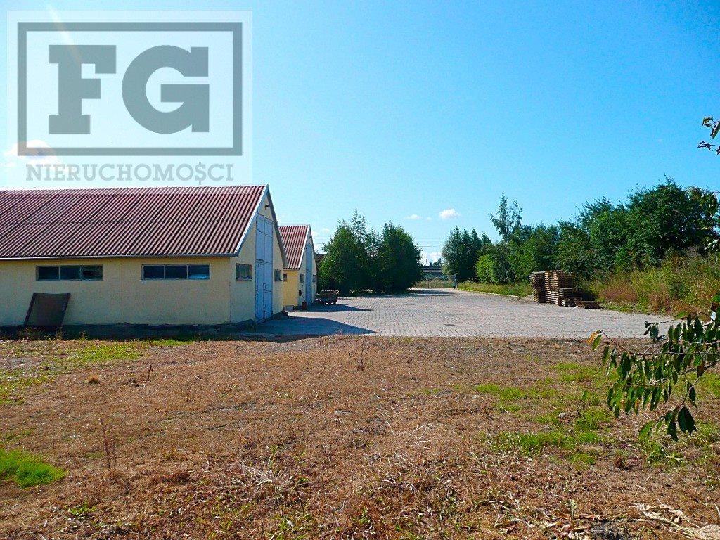 Lokal użytkowy na wynajem Juszkowo, Cisowa  351m2 Foto 3