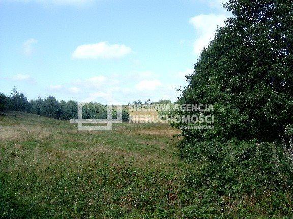 Działka budowlana na sprzedaż Donimierz  4980m2 Foto 8