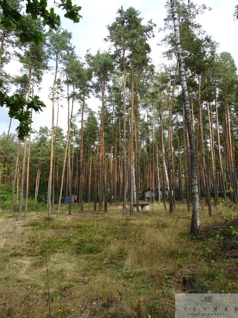 Działka leśna na sprzedaż Dziektarzew  2537m2 Foto 2