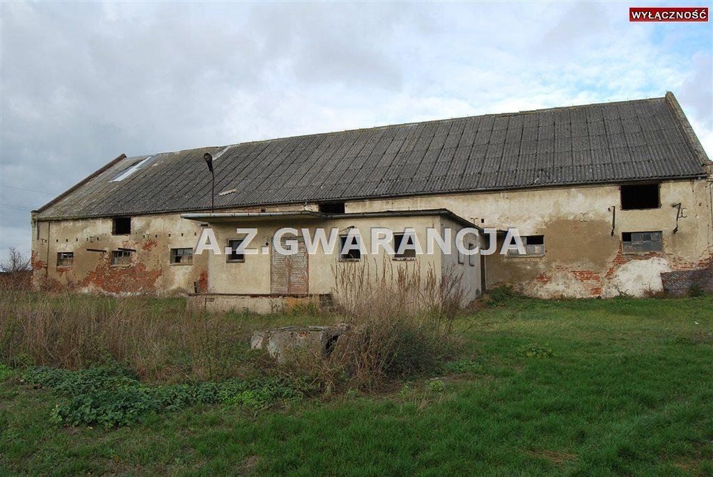 Działka inna na sprzedaż Bąkowice  9165m2 Foto 4
