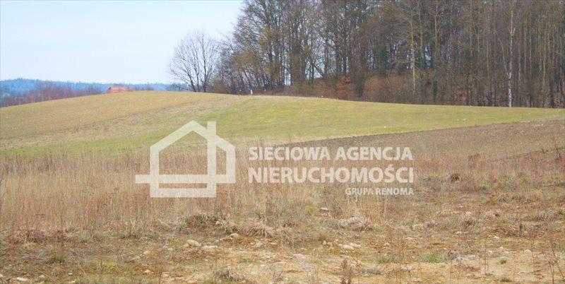 Działka budowlana na sprzedaż Kobysewo  1131m2 Foto 4