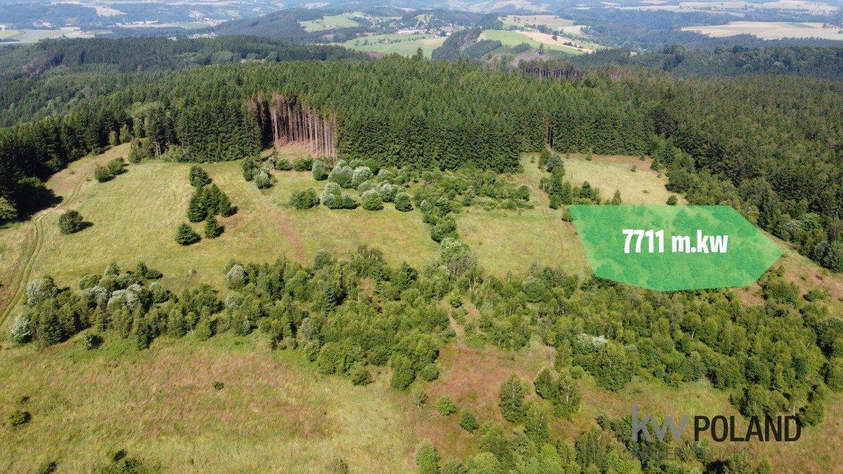 Działka rolna na sprzedaż Kudowa-Zdrój, Pstrążna  7709m2 Foto 1