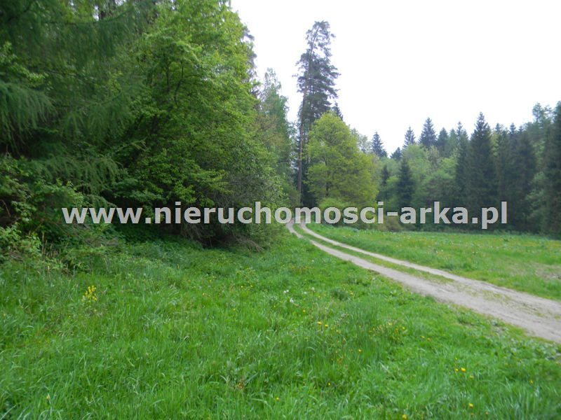 Działka leśna na sprzedaż Rabka-Zdrój  27000m2 Foto 1