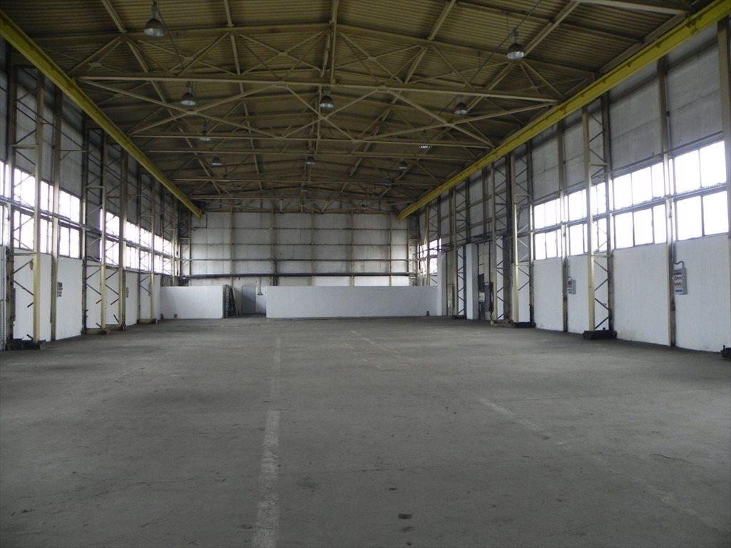 Lokal użytkowy na wynajem Katowice  1049m2 Foto 3