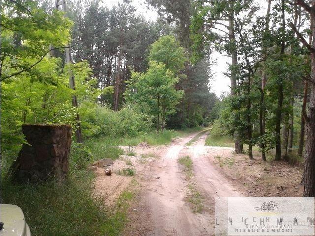 Działka budowlana na sprzedaż Maksymilianów  4489m2 Foto 5