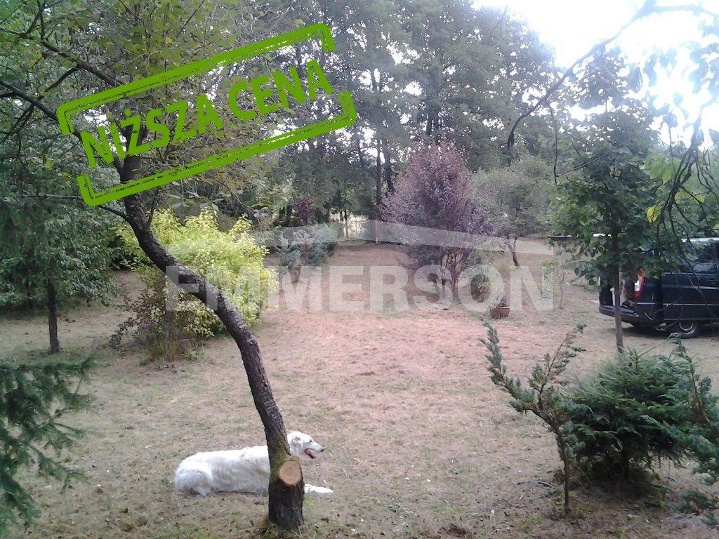 Działka rolna na sprzedaż Czosnów  12000m2 Foto 1