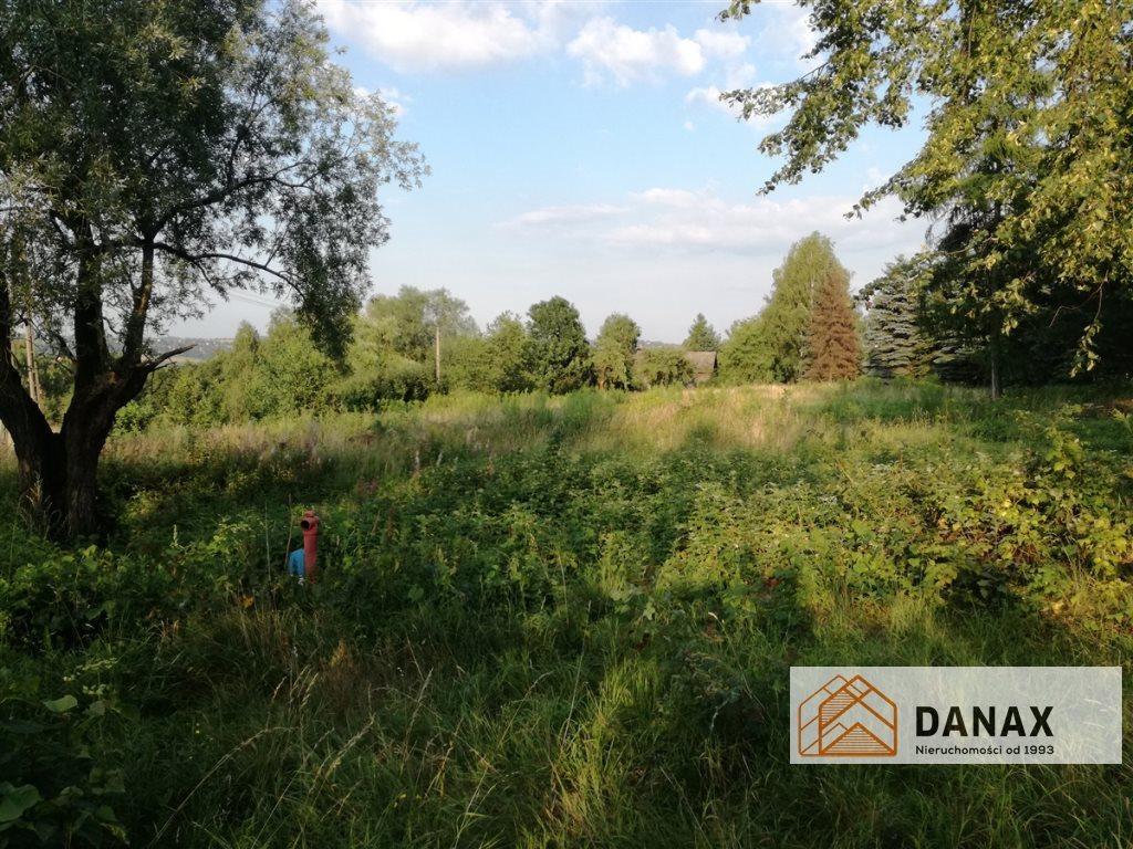 Działka budowlana na sprzedaż Janowice  1000m2 Foto 3