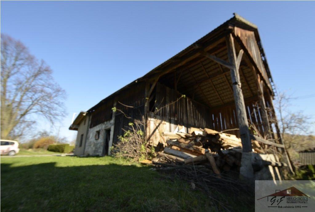 Działka rolna na sprzedaż Węgierka  11700m2 Foto 6
