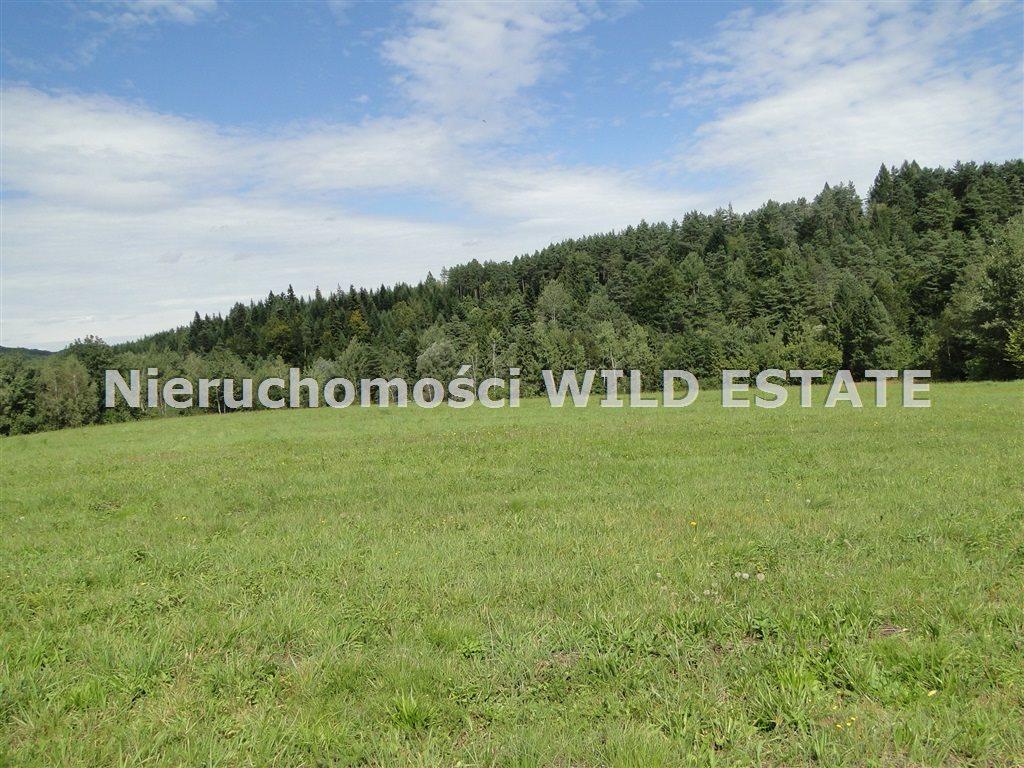 Działka rolna na sprzedaż Solina, Berezka  9400m2 Foto 4