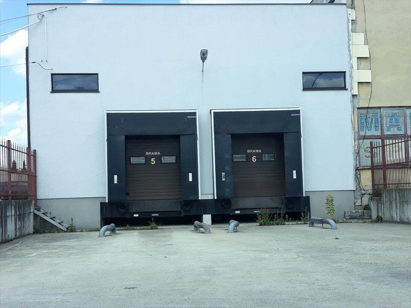 Lokal użytkowy na wynajem CHŁODNIA - 1200 m2 - rzeszów  1200m2 Foto 11