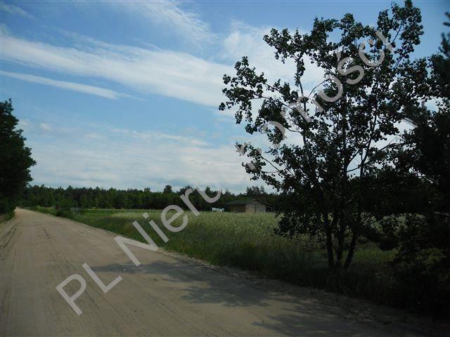 Działka rolna na sprzedaż Stanisławów  4567m2 Foto 1