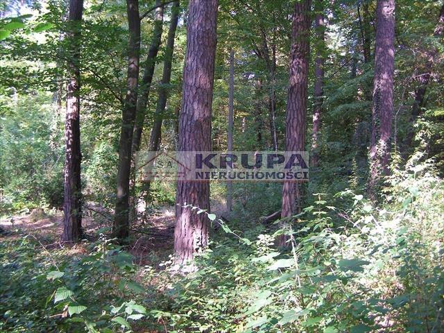 Działka leśna na sprzedaż Zalesie Dolne, Aleja Kasztanów  2511m2 Foto 2
